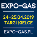 2019_expogas (22 kB)